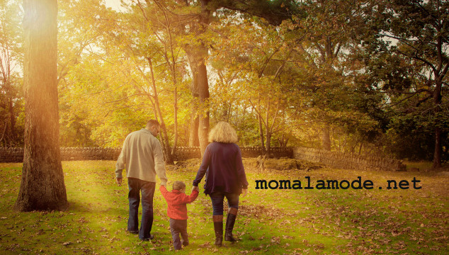 Tracy LaGrua Photography: Fall Mini Session Special