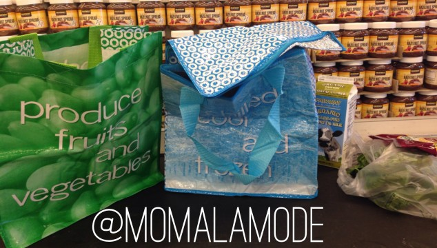 Sustainably Chic Reusable Bags by MY ECO {And a Special Discount!}