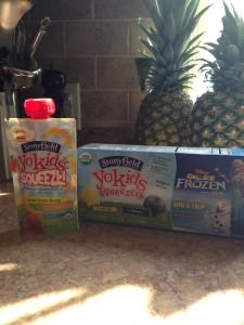 Stonyfield Yogurts