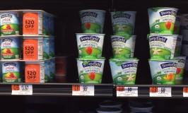 Stonyfield Yogurt 2