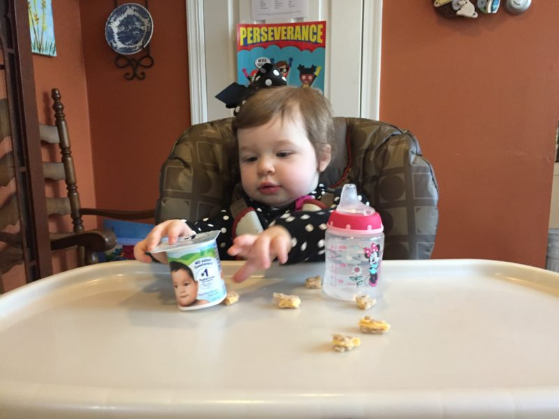 So you get the idea that we're big fans of Stonyfield yogurts in our household (and yes, full disclosure, I've been a brand ambassador for the product for a ...